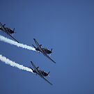 air show 15 by BlaizerB