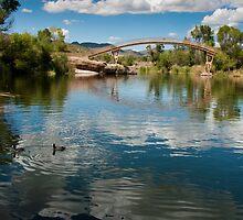 Bridge at Patagonia Lake State Park by Lucinda Walter