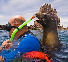 Curious California Sea Lion with Carlos by Michael S Nolan