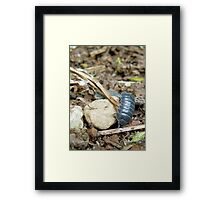 clumsy in armour Framed Print