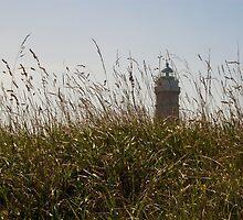 Lighthouse of Cabo Mayor by El Gran Toñeti