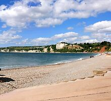 Panoramic of Seaton Devon by Chris L Smith