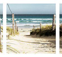 Path to Beach - Warrnambool by Craig Holloway