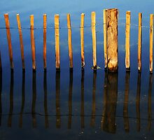 Reflections of wooden posts in a lake by buttonpresser