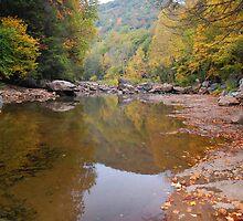Fall Reflections by Jason Vickers