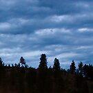 Stormy Skies by Gregory Ewanowich