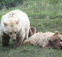Momma and Bear Cub by Carol Bock
