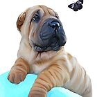 Shar pei puppy and butterfly by Cazzie Cathcart