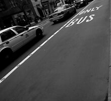 only bus. manhattan, nyc by tim buckley   bodhiimages