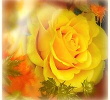 Autumn's Rose by Morag Bates