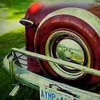 Cute Rear End by James L. Brown