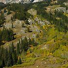 Moose Pond by Luann wilslef