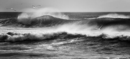 Hurricane Earl by bettywiley