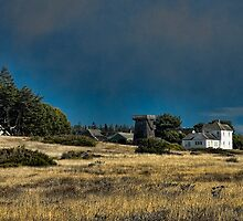 Mendocino Headlands by Karen Peron