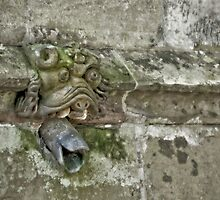 Mouldy Gargoyle by monkeypolice