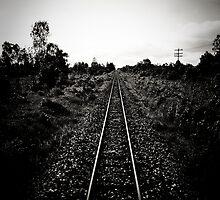 Long Way From Home by lokanin