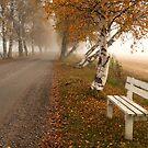 Autumn road by ilpo laurila