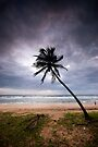 Storm Warning by Vikram Franklin