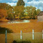 Little Autumn Barn by Linda Miller Gesualdo