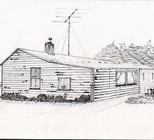Western Southland Farm House NZ by bitsdraw