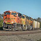Burlington Northern Santa Fe TRAIN Engine by Diane Trummer Sullivan
