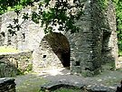 Duddon Iron Furnace. by Roy  Massicks