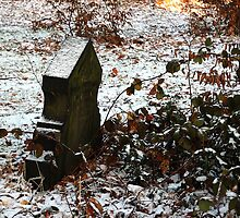 Snowy Grave 2 by Rees Adams