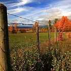 Farm & Fields - Farm Country - McBride BC by frame-by-frame