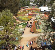 Floriade - No.2       From Up High. by shortshooter-Al