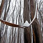 Snow man in his hammock by wolfcat