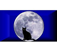 Cat and the moon Photographic Print