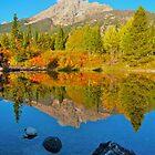 Fall Reflections Jenny Lake area by Luann wilslef