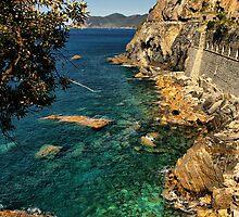 Ligurian Coast by Barbara  Brown