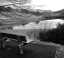 Ladybower Reservoir, Derbyshire by Rees Adams