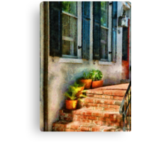 Flowers - Plants - The Stoop  Canvas Print