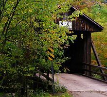 Hidden Covered Bridge by Pamela Phelps