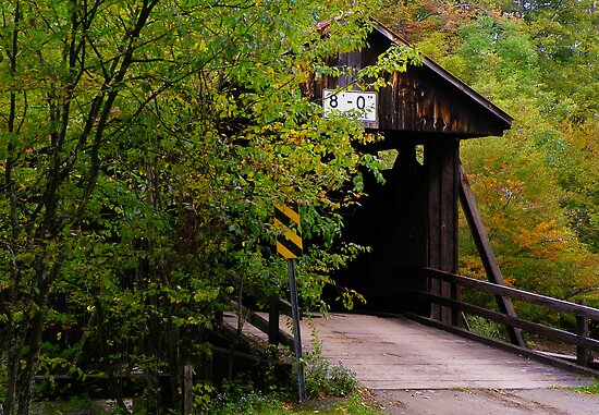 Hidden Covered Bridge by Pamela Phelps