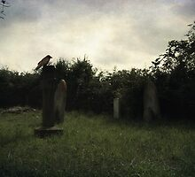 Daytime at the graveyard by Citizen