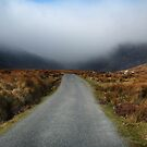 mist on the Comeragh Mountains by Declan Carr