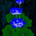 Blue Lotus by myrbpix