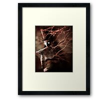 Tale With A Hat Framed Print