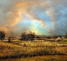 Pastoral by Jessica Jenney