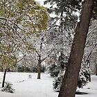 Retiro Park II by OlurProd