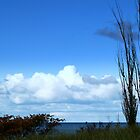 Sky Over Lake Michigan by BarbL