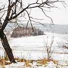Winter landscape with an ugly tree. by Valentina Walker