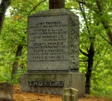 Henry David Thoreau 1816-1862 by Monica M. Scanlan
