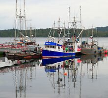 Prince Rupert harbour I by zumi
