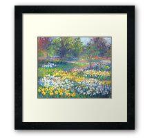 in spring Framed Print