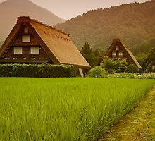 Shirakawago by Robert Chester Lee