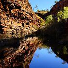 Hamersley Gorge, Karijini by Julia Harwood
